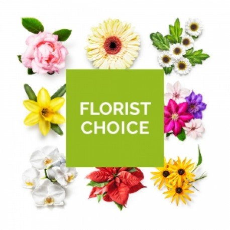 D2F Florist's Choice in Water